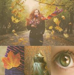 35 #free #actions for #Photoshop Autumn theme