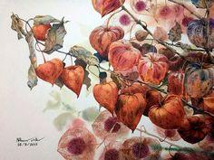 Осенние цветы от Kitipong Ti.