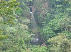 The waterfall, one of hundreds to be found, especially as you drive through the Panama mountains