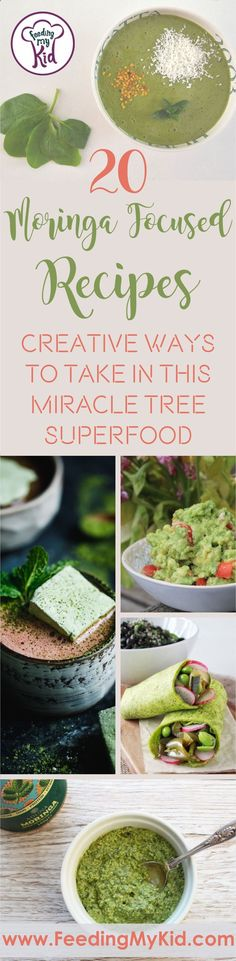 Miracle Diets - Moringa is a miracle tree superfood that is amazing for the body. Wanting to get more in your diet? These moringa recipes will do just that! - The negative consequences of miracle diets can be of different nature and degree.
