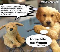 Les mascottes de Lydie Bonnaire et iMagine par Nathalie Dubowsky