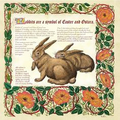 "My last name (Connelly) in Gaelic translates to ""The place in heaven(Summerland) were the rabbits dwell"" :)"