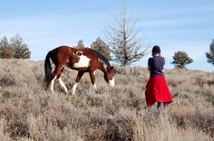 Our first trip to the South Steens in December 2008, when we encountered this colt, and named him Darling Calls Dibs (commonly called Dibs.)