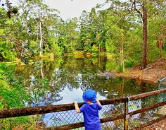 KUMBARTCHO SANCTUARY, EATON HILLS Where is it: Bunya Pine Crt, Eatons Hill Why we love it: Such a quiet spot in a beautiful bushland setting. It's another great spot in the south-east to get the kids back to...