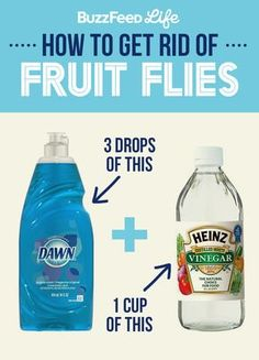 Our trick for getting rid of fruit flies is simple: put three drops of dish soap (whatever kind you use) into 1 cup of vinegar and leave it out in a bowl. The vinegar will attract the flies to the bowl and the soap will reduce the surface tension so the flies sink to the bottom.