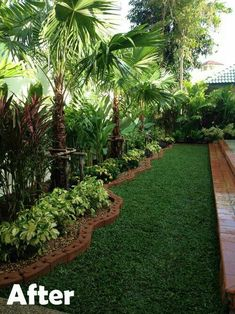 Jardín. Delantero, natural Beautiful Flowers, Beautiful Gardens, Front Yard Design, Tropical Backyard, Tropical Landscaping, Backyard Ideas For Small Yards, Spring, Front Yard Landscaping, Garden Design