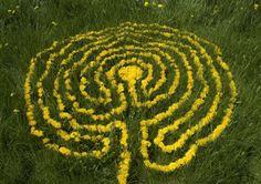 Dandelion labyrinth - Environmental Artist Sally J. Smith