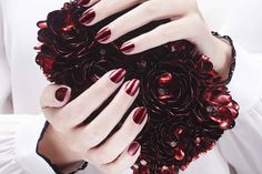 The alice + olivia x Nails inc collection features rich and opulent shades for fall | Sephora Beauty Board
