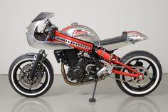 Kawasaki ER-6n by Louis Moto © DR