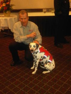 Having a moment with Molly the Fire Dog at a recent trade show Trade Show, Some Fun, Fun Stuff, Fire, In This Moment, Dogs, Animals, Fun Things, Animales