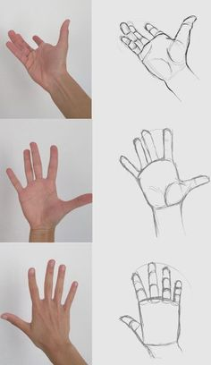 59 tutos & idées pour apprendre à dessiner une main Arte Com Grey's Anatomy, Anatomy Art, Hand Drawing Reference, Art Reference Poses, Art Drawings Sketches Simple, Pencil Art Drawings, Hand Drawings, Drawing Lessons, Anime Hand