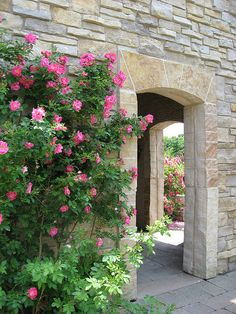 rose garden, Olbrich Botanical Gardens, Madison, Wisconsin. * a possible location