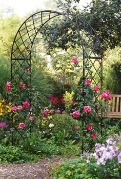 """SO beautiful! I love the idea of climbing perennials. I think to this I would add """"the president"""" clematis. Keep the arch from rusting by spraying it with a clear coat of polyurethane."""