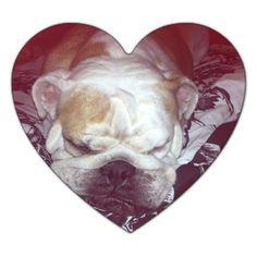 I luv sleeping bulldogs