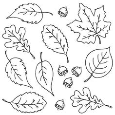 Embroidery Flower Patterns Aunt Martha's Special Edition - Fall Leaves - Colonial Patterns, Inc. Hand Embroidery Patterns Free, Embroidery Materials, Hand Embroidery Tutorial, Embroidery Sampler, Embroidery Flowers Pattern, Embroidery Transfers, Vintage Embroidery, Flower Patterns, Felt Embroidery