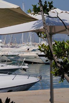 Café Sidney, Marina Botafoch, Ibiza, Spain
