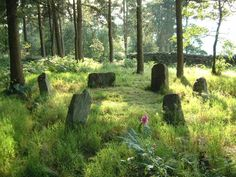 Doll Tor stone circle. Photo by Barry Teague. Noticed that the other Doll Tor picture is popular. Here's my favourite.