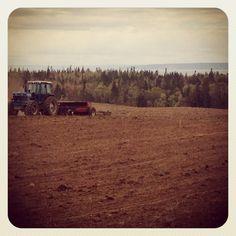 Dad seeding - Getaway Farm