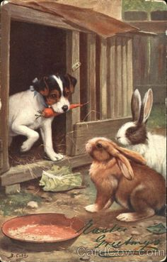 Vintage Easter postcard - A Jack Russell Terrier does not want to share a carrot with some bunny rabbits! Rabbit Pictures, Dog Pictures, Vintage Dog, Vintage Easter, Puppy Day, Rabbit Art, Bunny Art, Animal Paintings, Dog Art