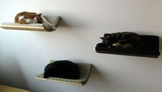21 Furniture Ideas for Pet Lovers And Their Furry Friends | Bored Panda