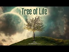 """Explore Life with KILROY (2015) - Surfing - YouTube  """"Perhaps you have to get lost, so you can find yourself"""""""