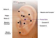 Donde esta el punto del riñon en la oreja