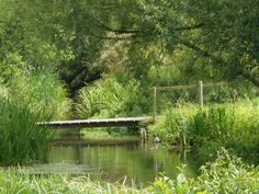 Water Meadows, river Itchen, Winchester Winchester England, Best Pubs, Wild And Free, Natural World, Hampshire, Rivers, Beautiful World, Great Places, Countryside
