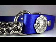 Waterproof Martingale Dog Collar ~ Biothane and Stainless