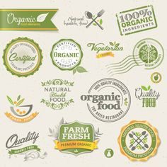 Set of organic food labels vector 01