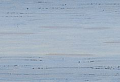 Minwax Water Based Wood Stain Onyx Kitchen Island