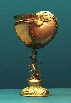 nautilus antique art - Google Search