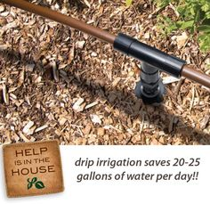 The nice thing about drip irrigation is that you can start small and expand as you wish. Start with an inexpensive kit that simply connects to a spigot near your garden. Add a battery-operated timer to automatically turn the water on and off.     Drip irrigation is a good way to reduce diseases in gardens. Fungi and diseases often thrive on wet leaves, but with micro irrigation the water is delivered only to the plant's base. The leaves never get wet and diseases don't get started.