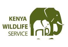 Image result for kenya wildlife service logo Service Logo, Logo Google, African Safari, Kenya, Maria Teresa, Wildlife, Logos, Digital, Image