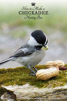 How to make a chickadee nesting box