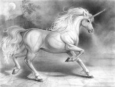 Unicornio en Blanco y Negro.