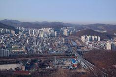 안양천 2014.1.31