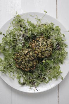 Green Burgers : The Healthy Chef – Teresa Cutter