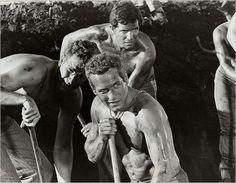 "Paul Newman in ""Cool Hand Luke"", 1967 Movie Plot, It Movie Cast, We Movie, Man Movies, Wayne Rogers, Paul Newman Joanne Woodward, Cool Hand Luke, Good Movies On Netflix, Very Scary"