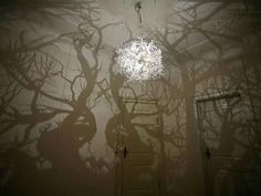 Cast a spooky forest shadow with a chandelier of branches.