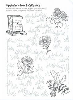 Opylování-včelí práce | Výtvarná výchova