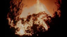 Commemorating the tenth anniversary of the Ash Wednesday bushfires, this Report story recalls the cauldron of February assesses the recovery made in the decade since, and poses the question of lessons learned