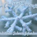 """Make Beautiful """"Crystal Snowflakes"""" http://www.christianitycove.com/crystal-snowflakes-christmas-science-experiment/5642/"""