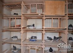 Shoe Rack, The Unit, Shoe Cabinet, Shoe Shelve