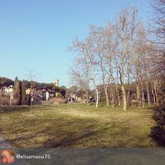 #myrimini #parco #cervi #regram di @elisamassi75