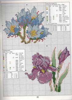 STATE FLOWERS  (bbj0088) S. Dakota & Tennessee 1/1