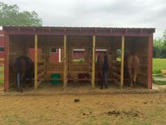 Great idea for pasture feeding. Feed from the outside and every horse has their own area.