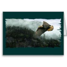 WILDLIFE Bald Eagle & Misty Forest Greeting Cards