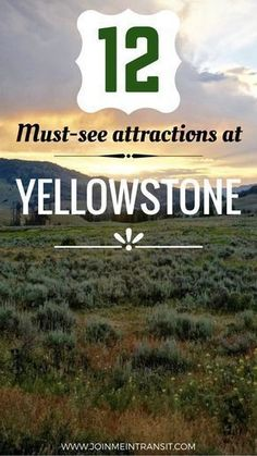 12 Things To Do In Yellowstone – Where Heaven and Hell Collide Don't miss visiting these sights at Yellowstone National Park. Yellowstone things to do, Yellowstone guide, planning a trip to Yellowstone, top things to do in Yellowstone Camping Yellowstone, Visit Yellowstone, Yellowstone Vacation, Yosemite Camping, National Parks Usa, Grand Teton National Park, Yellowstone National Park, Places To Travel, Vacation Places
