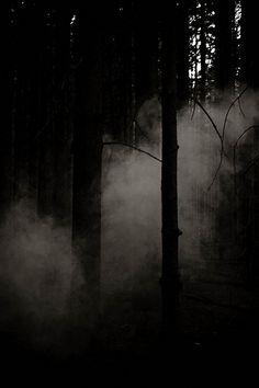 Ik voel me thuis in het donker, daarom vind ik het heerlijk om in een bioscoop zaal te zitten