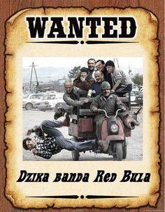 WANTED ! | Niepoprawni.pl